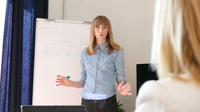 Businesswoman Explaining Flow Chart To Colleague