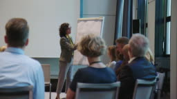 Businesswoman explaining strategy over flipchart