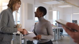 Businesswoman greeting coworkers before discussion