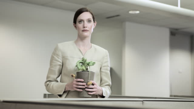 businesswoman holding dying pot plant - downsizing stock videos & royalty-free footage