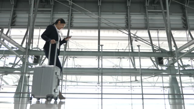 businesswoman walking with luggage through concourse - ticket stock videos and b-roll footage