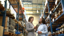 Businesswomen discussing delivery plan in warehouse