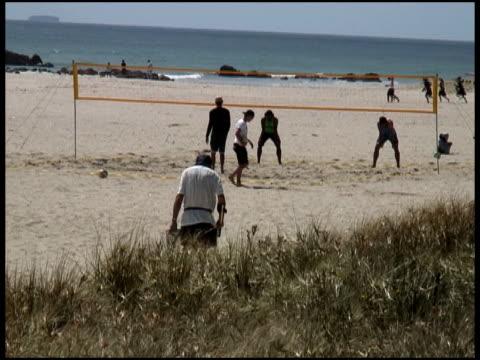 なビーチ: アクティビティ、ゲーム、スポーツ - 宝探し点の映像素材/bロール