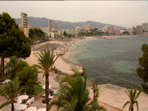 busy beach resort with palm trees in foreground hotels and mountains in background - balearic islands stock videos and b-roll footage