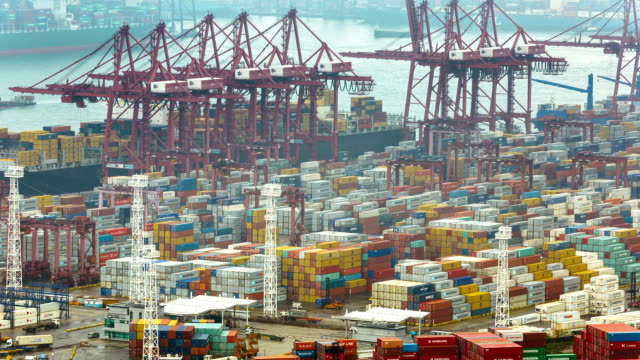t/l ms busy cargo container terminal / hong kong, china - container video stock e b–roll