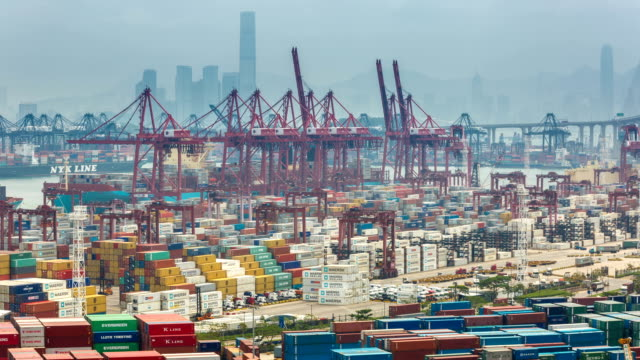 T/L MS Busy cargo container terminal / HongKong, China