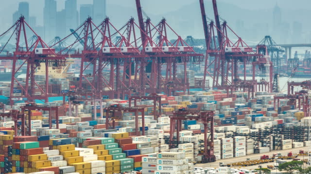 T/L MS ZO Busy cargo container terminal / HongKong, China