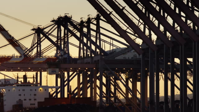 Busy Container Cranes at Port