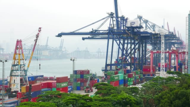 busy container harbor hong kong at day, timelapse 4k. - freight elevator stock videos & royalty-free footage