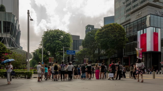 busy orchard road - orchard stock videos & royalty-free footage