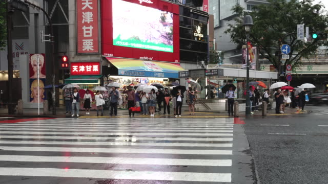 busy pedestrian and car crossing at japan - time lapse rainy season - zebra crossing stock videos & royalty-free footage