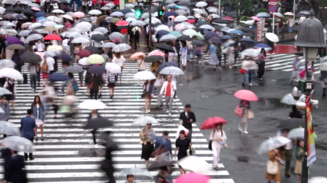 busy pedestrian and car crossing at japan - time lapse rainy season - crossroad stock videos & royalty-free footage