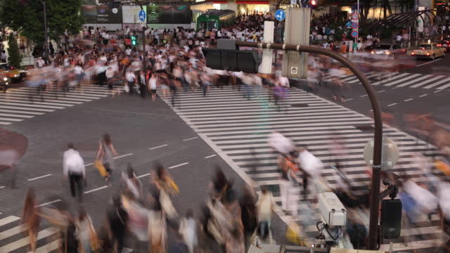 t/l ws ha busy street intersection at night / tokyo, japan - zebra crossing stock videos and b-roll footage