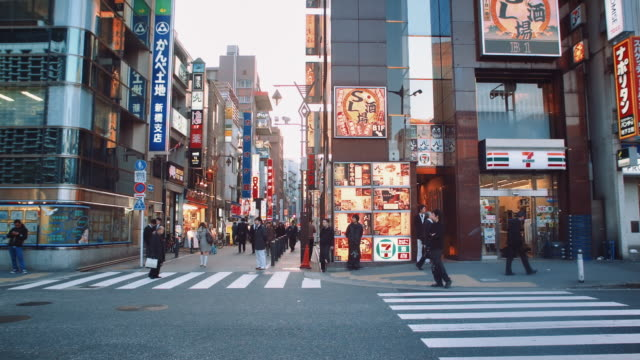 WS, Busy street of Shinbashi district