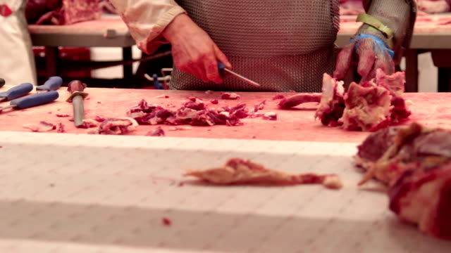 vídeos y material grabado en eventos de stock de carnicero - carnicero
