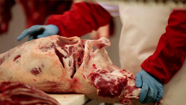 vídeos y material grabado en eventos de stock de butcher. - carnicero