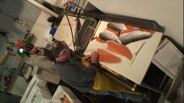 vídeos de stock e filmes b-roll de butchers clean and trim freshly caught fish. - cortado em filete