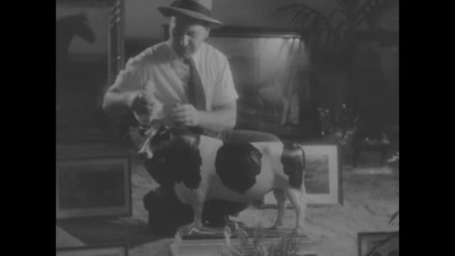 vídeos de stock e filmes b-roll de ms butter sculpture of elizabeth ii on horseback / vs artist ross butler wipes off cow figurines / butler with statue / cu butler pulls handful of... - elbow