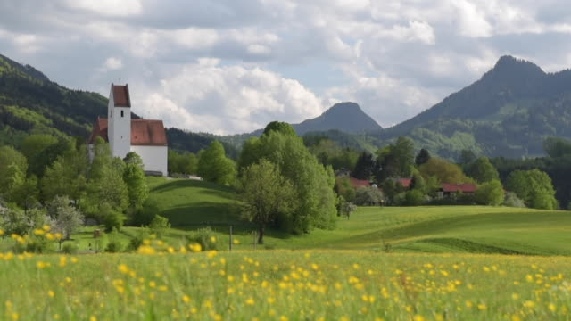 vídeos de stock e filmes b-roll de buttercup meadow and church at chiemgauer alps - ranunculus asiaticus