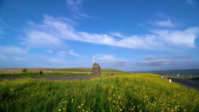 buttercups & england sign on large stone, a68 scotland, england - ranunkel stock-videos und b-roll-filmmaterial