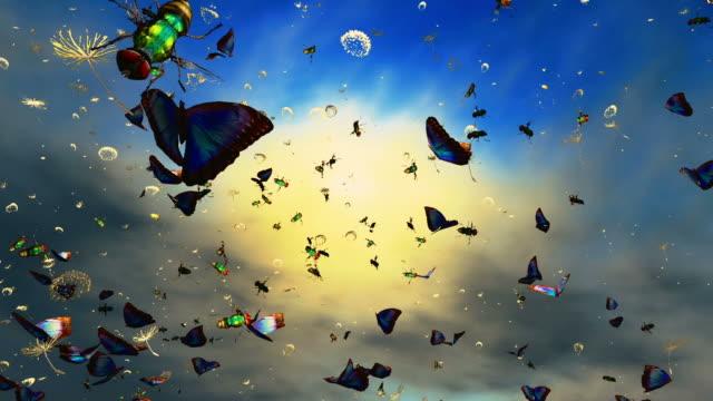 蝶、たんぽぽ - 多数の動物点の映像素材/bロール