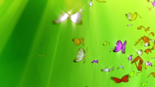 Butterflies Flying on Green Background + Alpha Channel