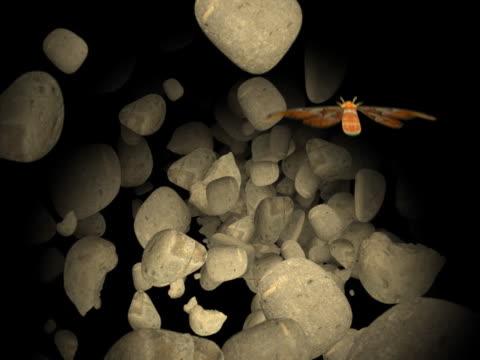 vidéos et rushes de butterfly flying between spinning stones - membre partie du corps