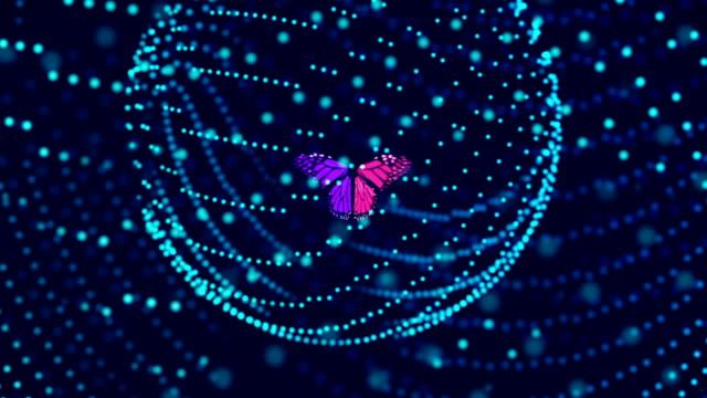 stockvideo's en b-roll-footage met vlinder in de digitale omgeving - middelgrote groep dieren
