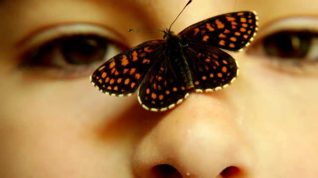 stockvideo's en b-roll-footage met butterfly on a girls nose - menselijke neus