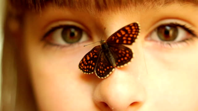 butterfly on a smiling girls nose - nose stock videos & royalty-free footage