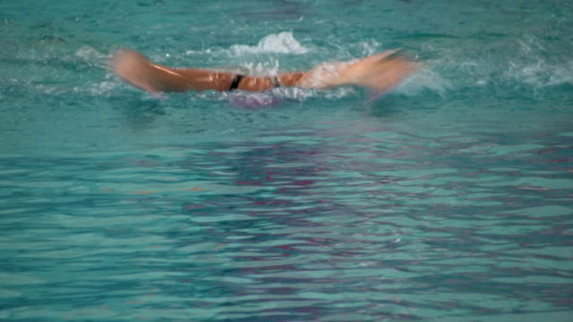 butterfly swimming - butterfly stroke stock videos and b-roll footage