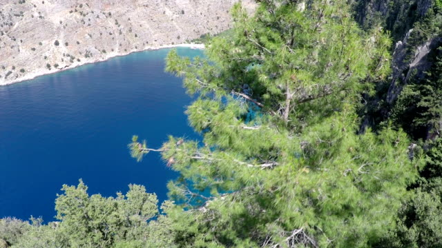butterfly valley - aerial video - pine stock videos and b-roll footage