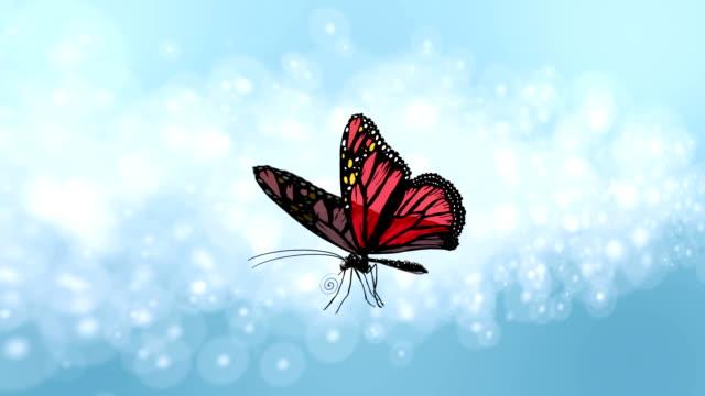 butterfly - - gliedmaßen körperteile stock-videos und b-roll-filmmaterial