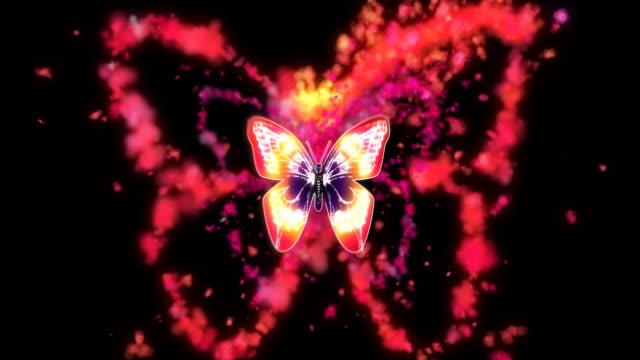 vídeos y material grabado en eventos de stock de mariposa con contorno de humo - fantasía