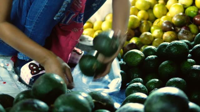 vídeos y material grabado en eventos de stock de compra de aguacate en el mercado del suelo - aguacate