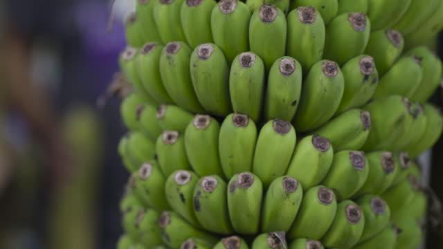 buying bananas - picking harvesting stock videos & royalty-free footage