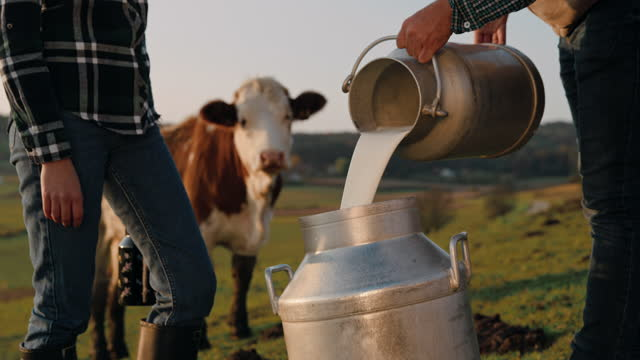 slo mo buying milk from a local farmer - dairy product stock videos & royalty-free footage