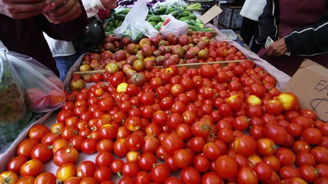 buying tomatoes at an open air market - tomato stock videos and b-roll footage