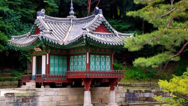vídeos y material grabado en eventos de stock de pabellón de buyongjeong y buyeongji estanque en huwon (jardín secreto) del palacio de changdeokgung. - pagoda templo