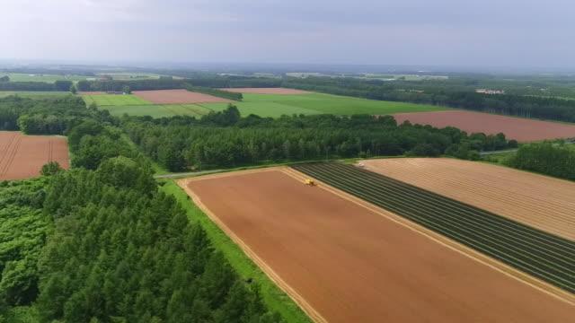 aerial by drone, tokachi plain, hokkaido, japan - satoyama scenery stock videos & royalty-free footage