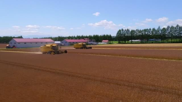 aerial by drone, wheat field, hokkaido, japan - 農作業点の映像素材/bロール