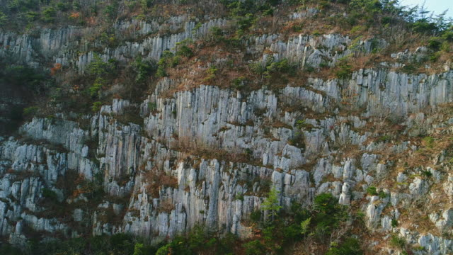 byeongpungbawi rock, the jusangjeolli cliff (basalt columns) in geumdangdo island / wando-gun, jeollanam-do, south korea - 岩肌点の映像素材/bロール