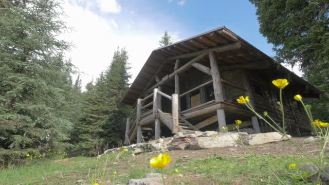 a cabin in the woods nature. - 山小屋点の映像素材/bロール