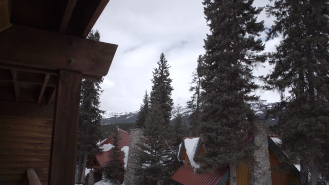 Cabin Lodges covered by snow and trees