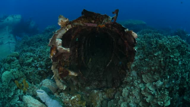 cabin of wwii japanese aichi e13a navy seaplane - shipwreck stock videos & royalty-free footage