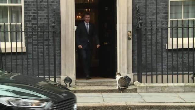vídeos y material grabado en eventos de stock de cabinet downing street arrivals and departures england london downing street ext matt hancock arriving / liam fox mp arriving / julian smith... - amber smith