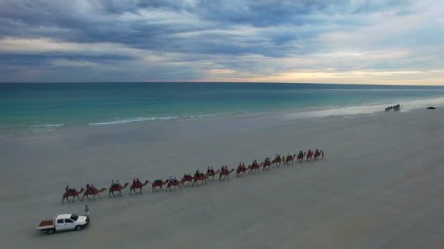 vídeos de stock, filmes e b-roll de cable beach, western australia - cable