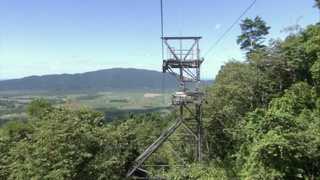 vídeos de stock e filmes b-roll de ms aerial pov cable car moving over trees / bellenden ker, queensland, australia   - árvore tropical