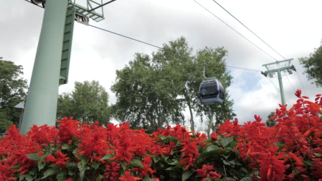 cable cars leaving and returning to lower station in funchal, madeira, portugal, atlantic, europe - madeira stock videos and b-roll footage