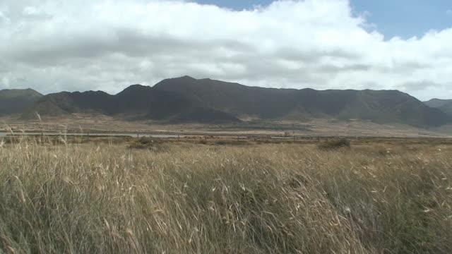 Cabo de Gata - Las Salinas
